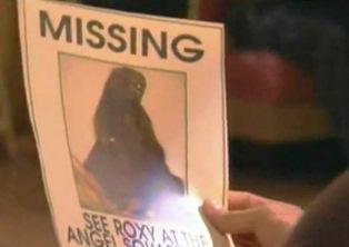 Morris is missing